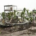 森を育てるための住宅とは!? 注目の若手に聞く、建築家の魅力