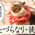 古文単語「いたづらなり/徒なり」(形容動詞ナリ活用)の意味と覚え方を解説!