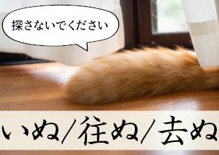 古文単語「いぬ/往ぬ/去ぬ」(ナ行変格活用)の意味と覚え方を解説!