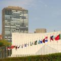 国連やユニセフなどで、世界平和や発展途上国のために働く方法!
